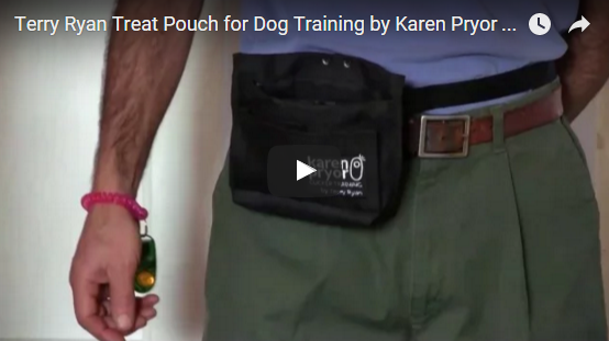 Learn all about the Terry Ryan Treat Pouch for Dog Training