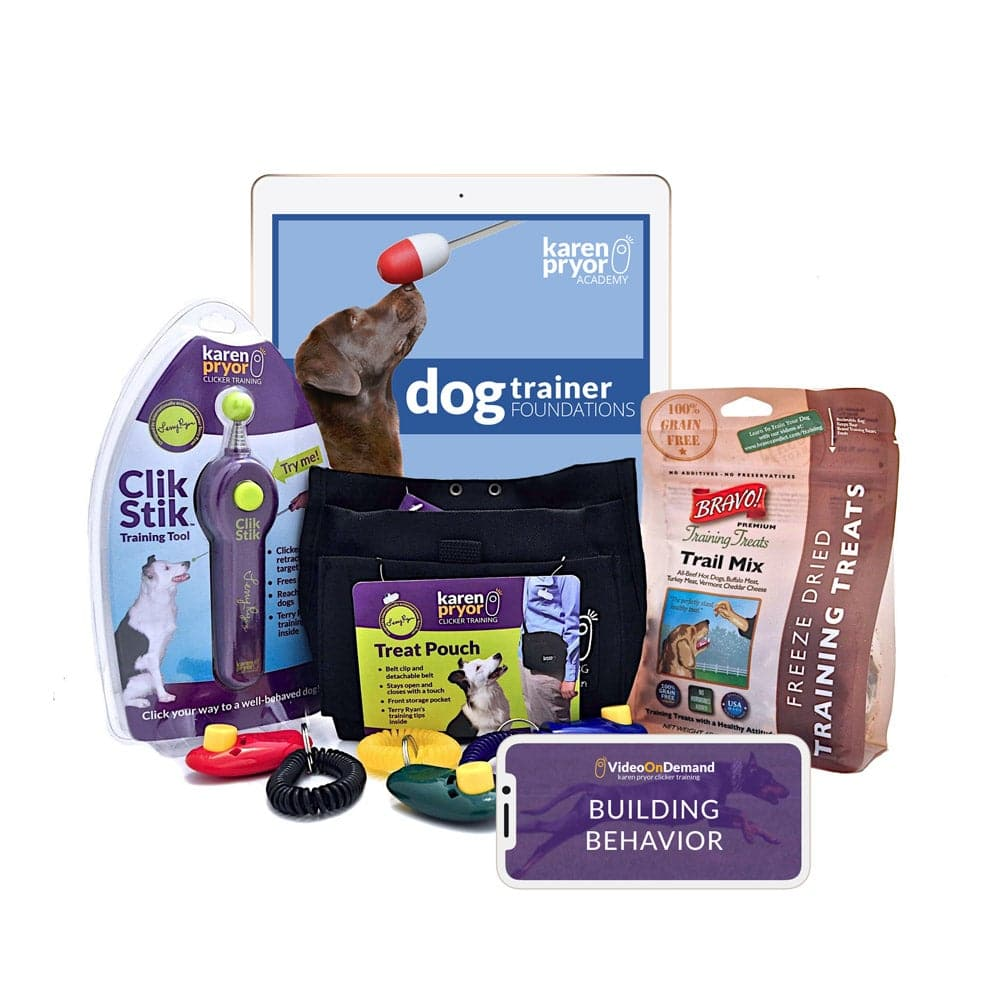 Dog Training Foundations:  Platinum Bundle