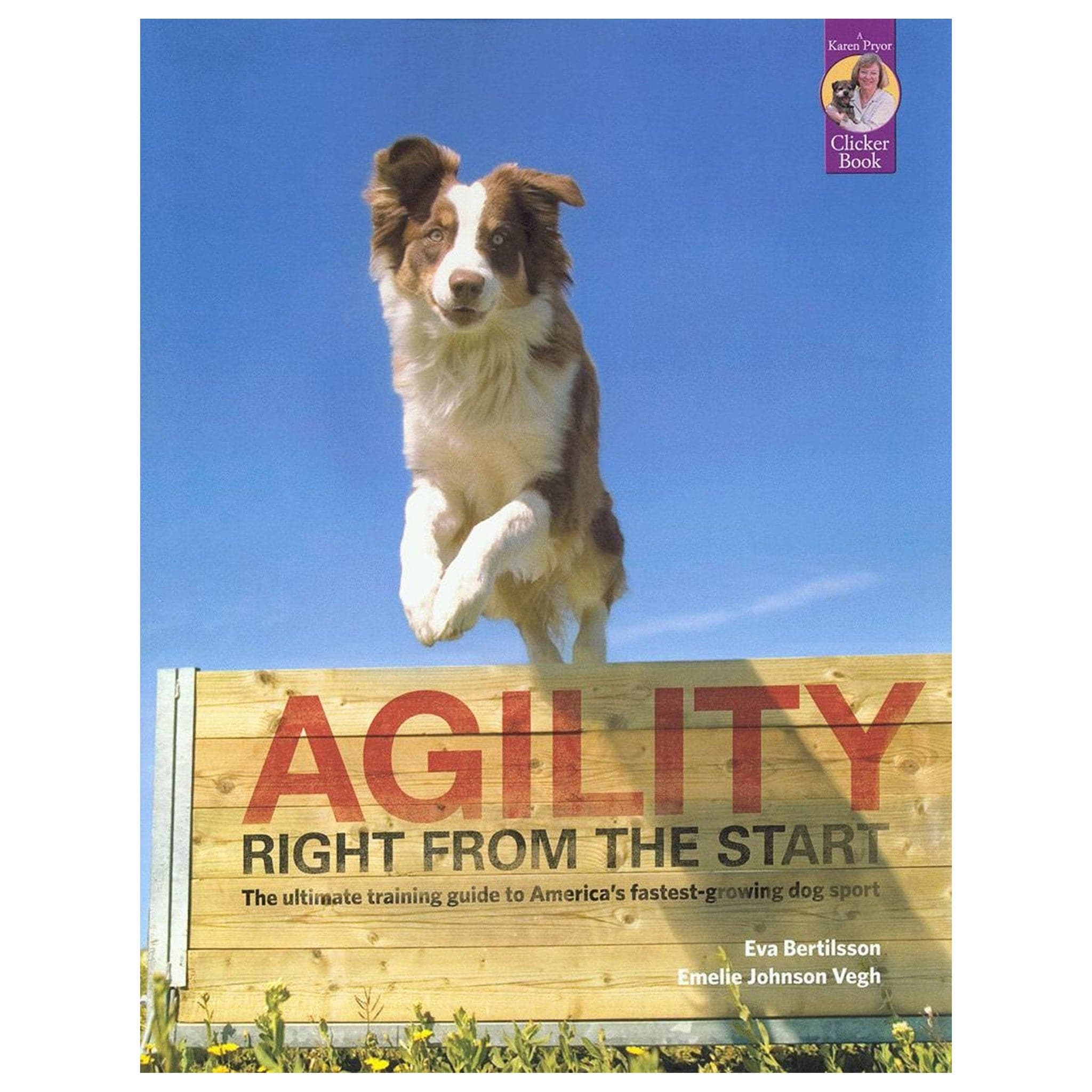 dog-agility-courses