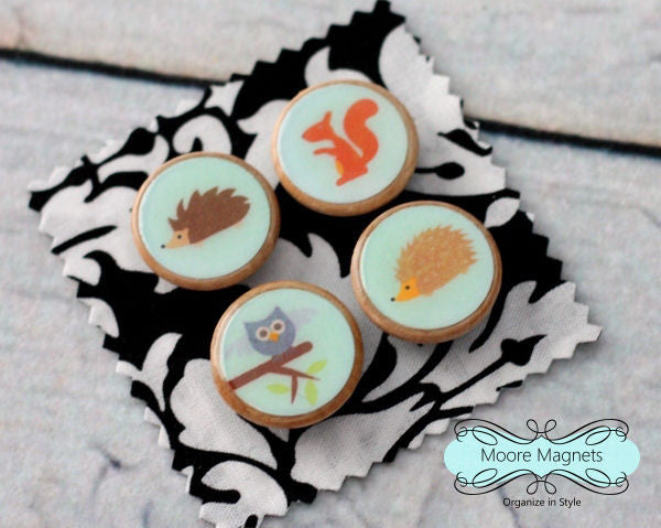 Woodland Animals Magnet Set of 4 - Woodland Animals Squirrel Owl Hedgehog 017