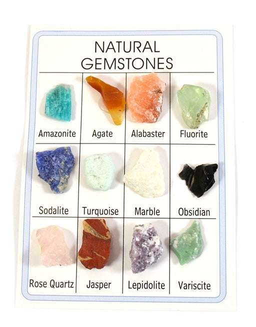 Pocket Reference Natural Gemstone Card with 12 Identified Specimens, 1cm Each