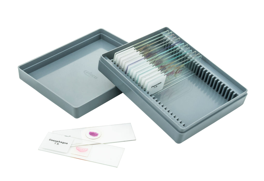 Microscope Slide Set Human Tissue - Beginner Set of 15.