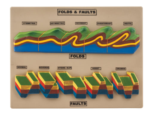 Fact & Fault Model