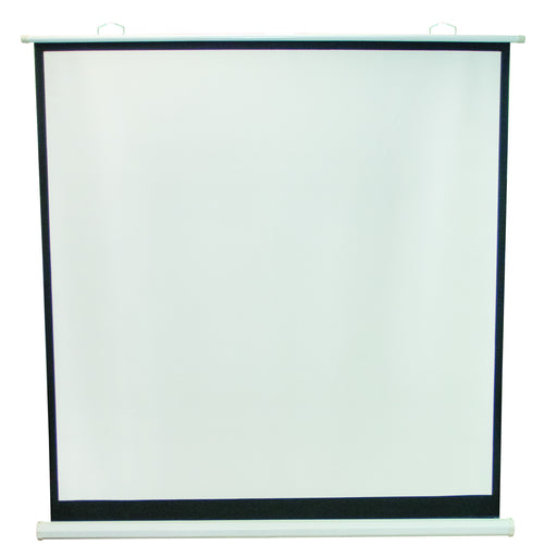 Projection Screen 70 x 70""
