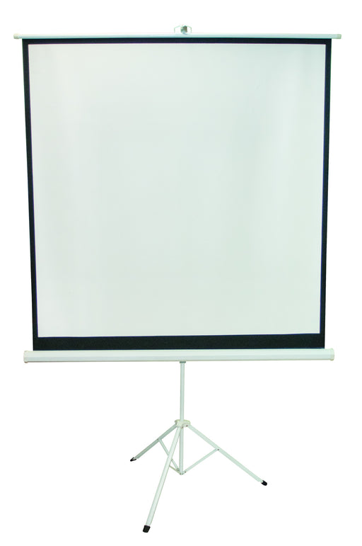Projection Screen 60 x 60""