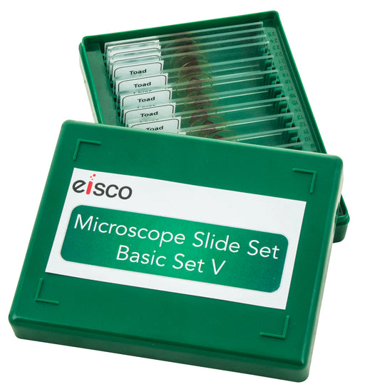 Microscope Slide Set - Basic Set No. V, Set of 15