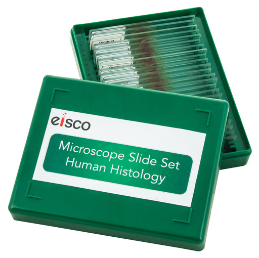 Microscope Slide Set - Human Histology, Set of 25