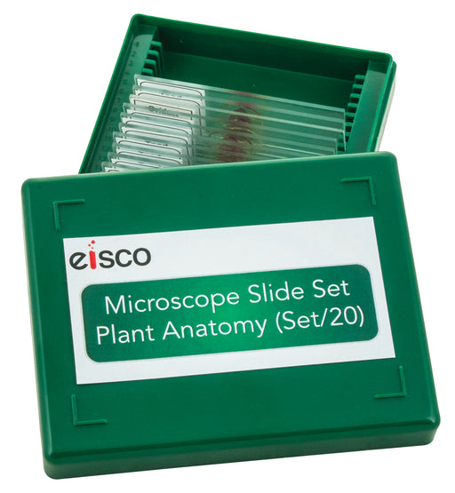 Microscope Slide Set - Basic Plant Anatomy, Set of 20