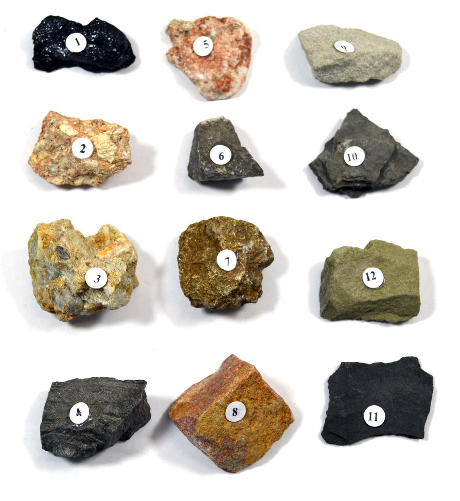 "Eisco Metamorphic Rocks Kit - Contains 12 specimens measuring approx. 1"" (3cm)"