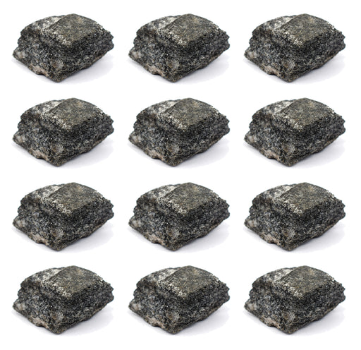 "12PK Biotite Gneiss Rock Specimen, 1"" - Geologist Selected Samples - Eisco Labs"