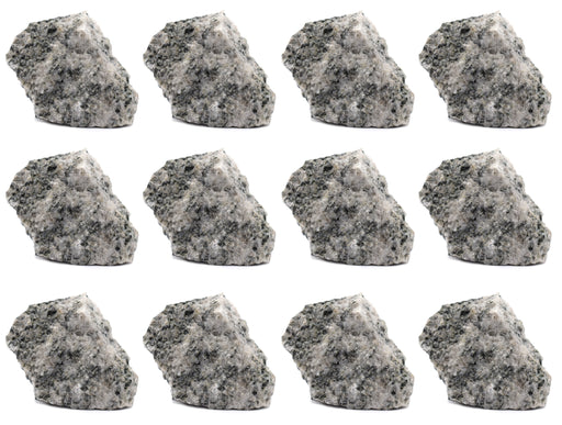 "12PK Raw Porphyritic Granite, 1"" - Geologist Selected Samples - Eisco Labs"