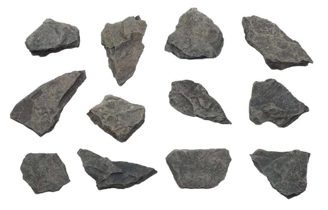12 Pack - Raw Carbonaceous Shale, Sedimentary Rock Specimens - Approx. 1""