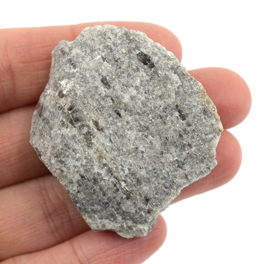 Approx 1 Igneous Rock Specimen Eisco Labs Great for Science Classrooms Geologist Selected /& Hand Processed Raw Volcanic Tuff
