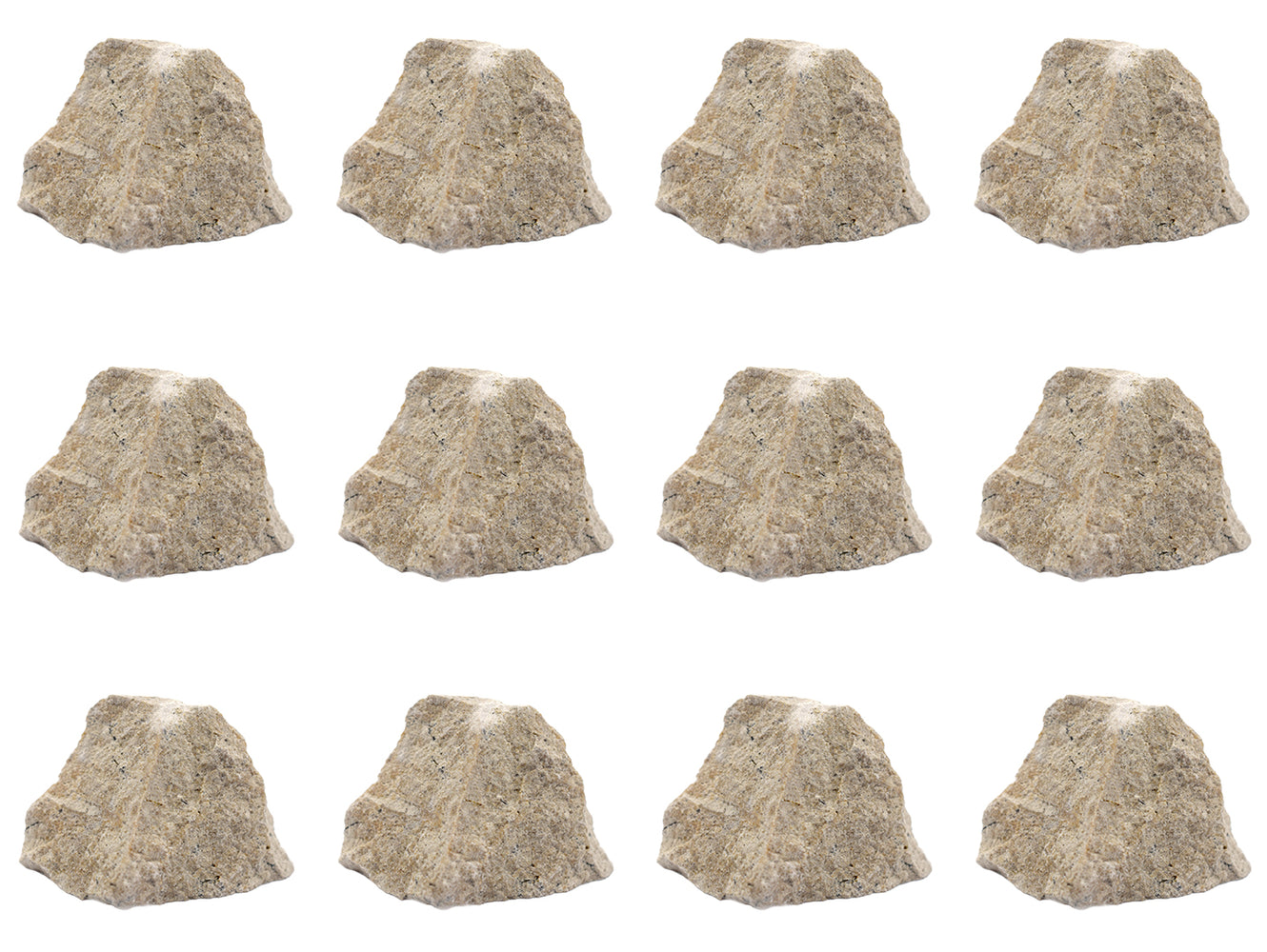 "12PK Raw Travertine, Sedimentary Rock Specimens - Approx. 1"" - Geologist Selected & Hand Processed - Great for Science Classrooms - Class Pack - Eisco Labs"