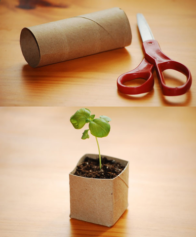 Toilet paper roll pot