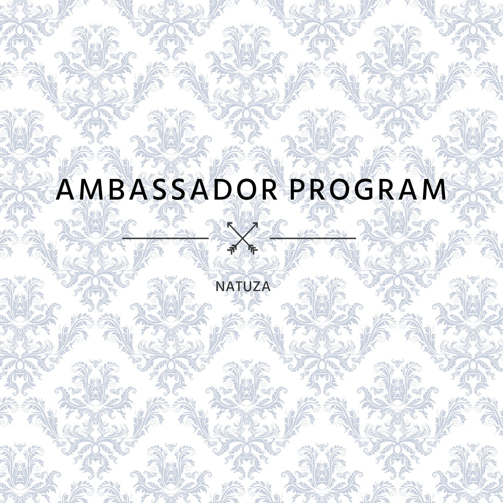 Ambassador Referral Program