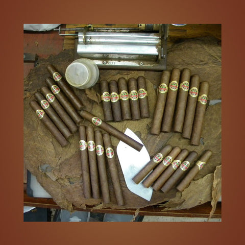 Havana Mixed Bundle Covadonga Cigars