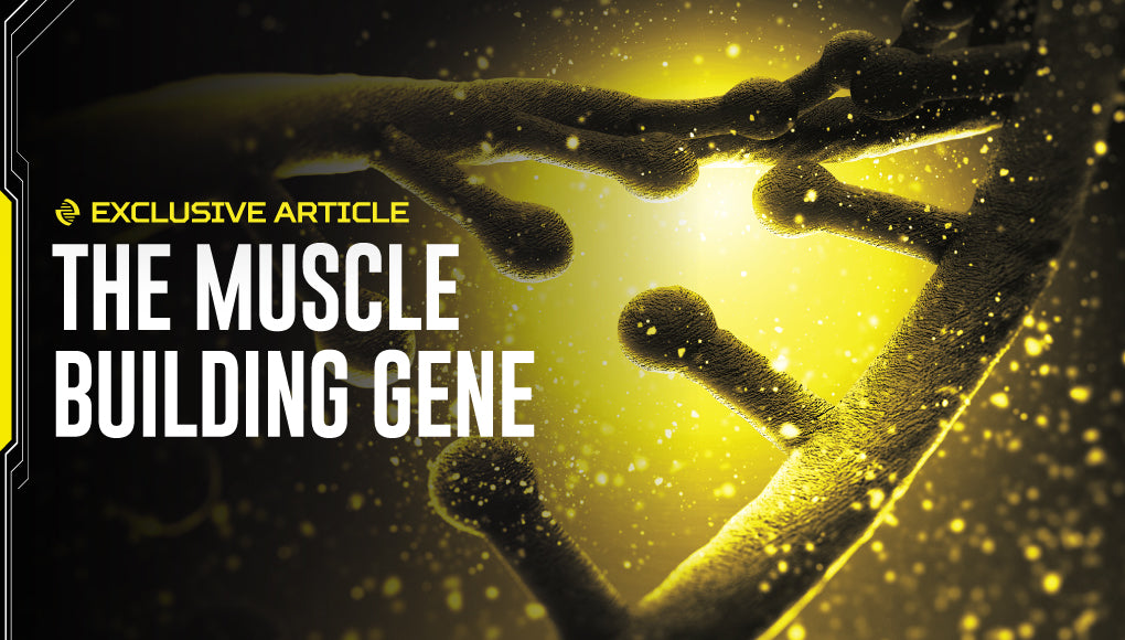 THE MUSCLE BUILDING GENE: IS YOUR DNA HOLDING BACK YOUR PROGRESS?