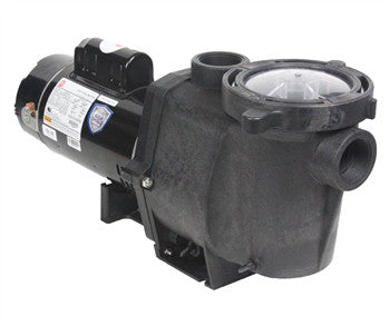 Energy Advantage Pump, 1.5 HP Two Speed