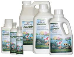 API/POND CARE: ALGAEFIX