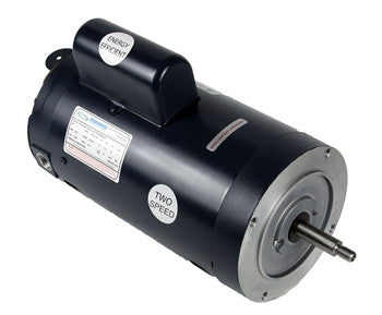 1.5 HP Threaded Shaft Two Speed 230 Volt