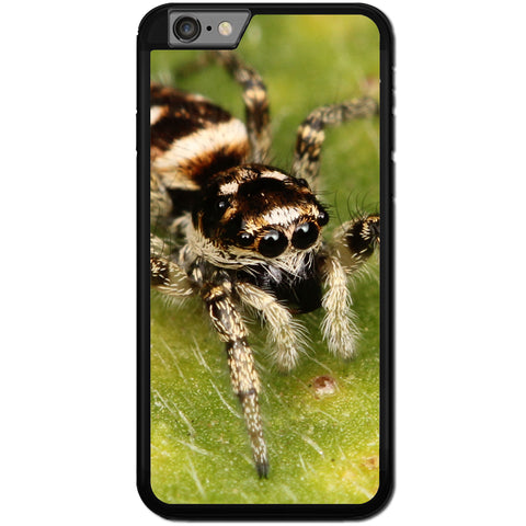 Fits Apple iPhone 7 - Zebra Spider Case Phone Cover Y00540