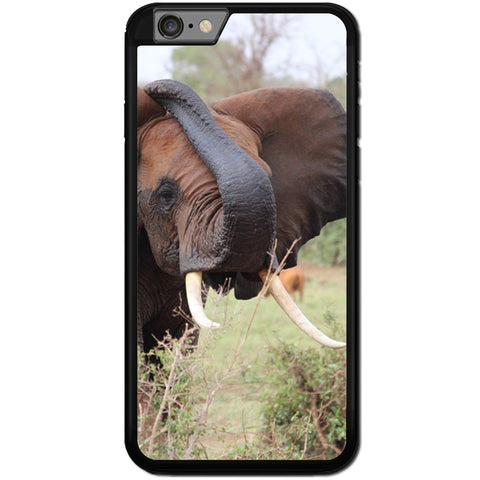 Fits Apple iPhone 6 & 6S - African Elephant Case Phone Cover Y00795