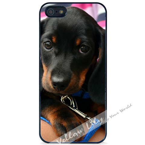 For Apple iPhone 4 4G 4S - Dachshund Puppy Case Phone Cover Y01244