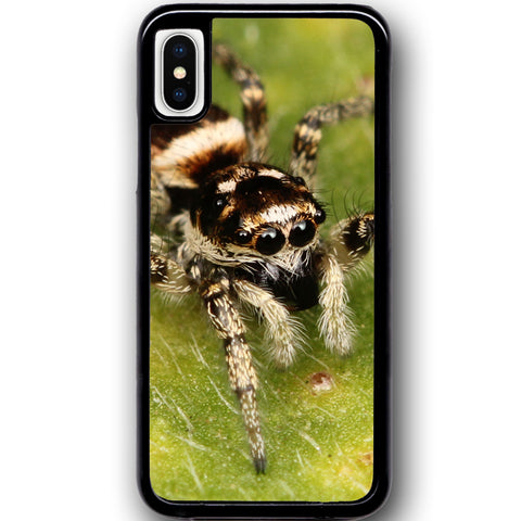 Fits Apple iPhone X - Zebra Spider Case Phone Cover Y00540
