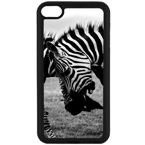 For Apple iPod Touch 6 - Zebra Fight Case Phone Cover Y00373
