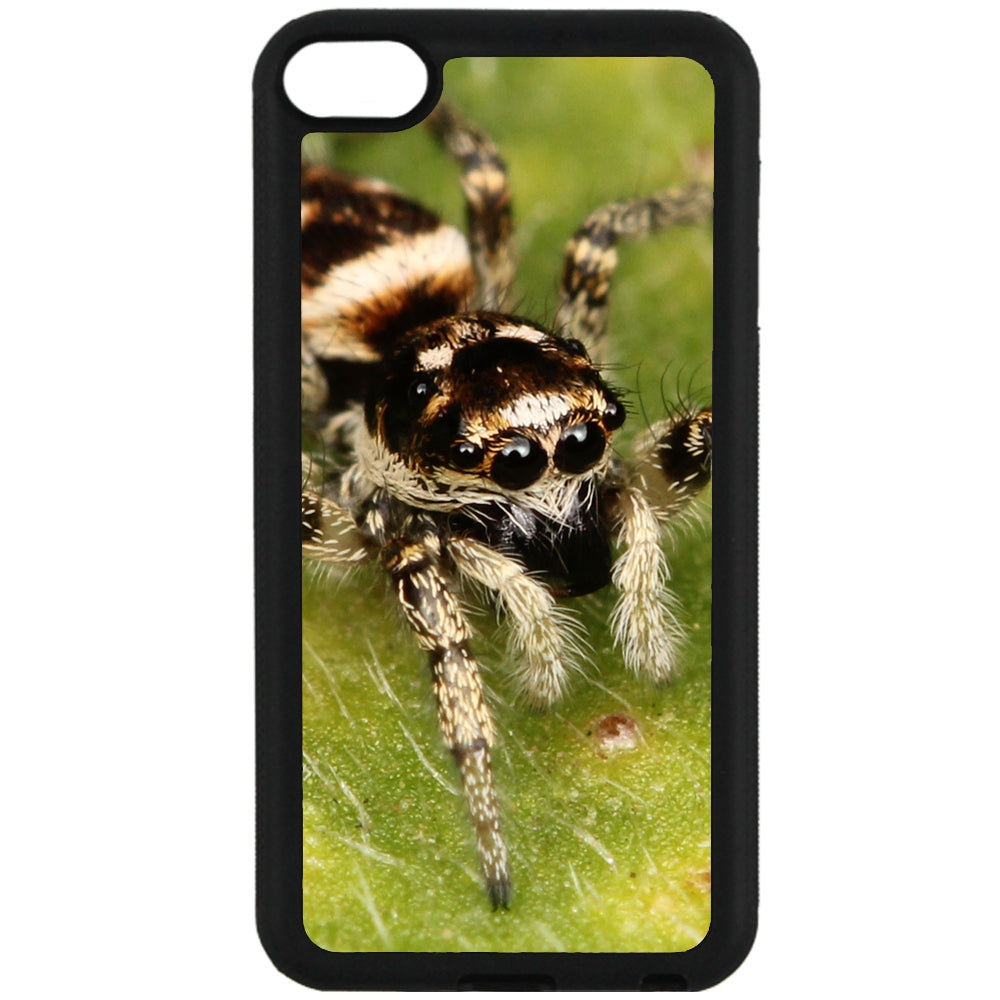 For Apple iPod Touch 6 - Zebra Spider Case Phone Cover Y00540