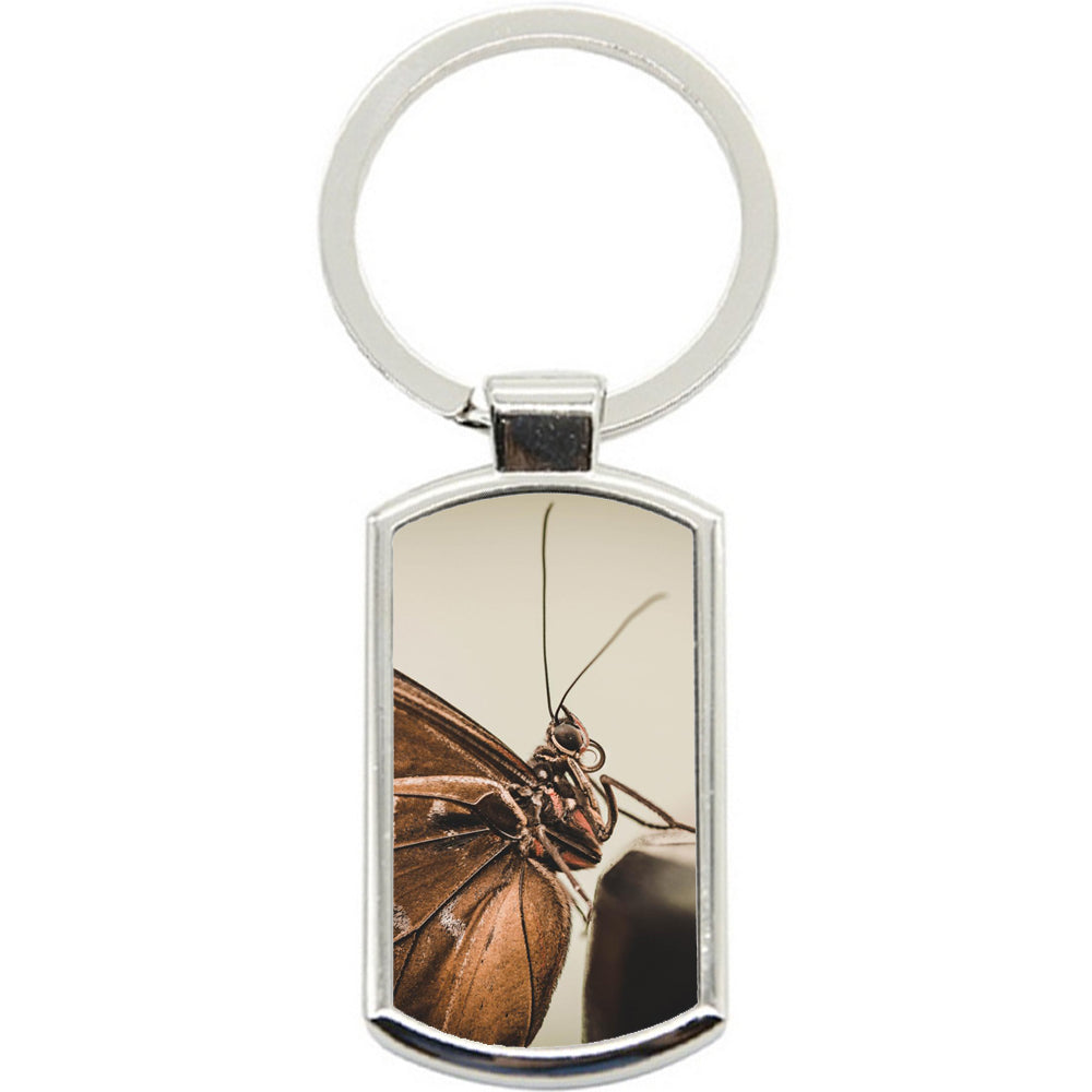 KeyRing Stainless Steel Key Chain Ring - Butterfly Perfect Y00034