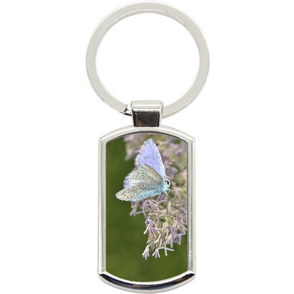 KeyRing Stainless Steel Key Chain Ring - Teal Butterfly Y00364