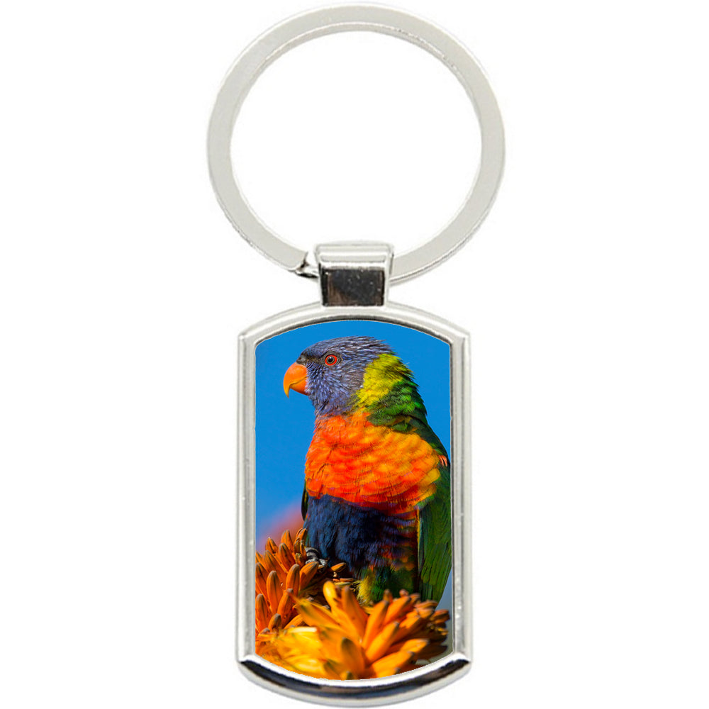 KeyRing Stainless Steel Key Chain Ring - Lorrikeet Bird Y00374