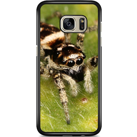 Fits Samsung Galaxy S7 - Zebra Spider Case Phone Cover Y00540