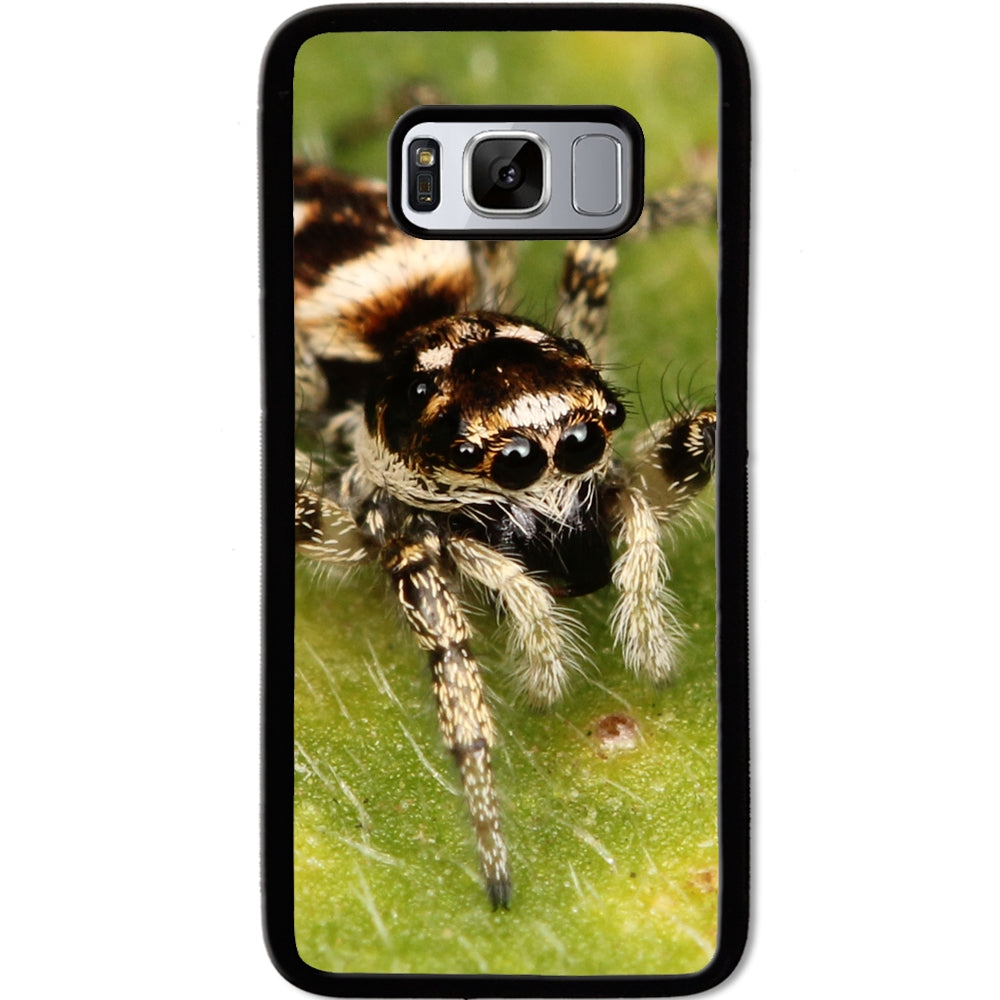 Fits Samsung Galaxy S8 - Zebra Spider Case Phone Cover Y00540