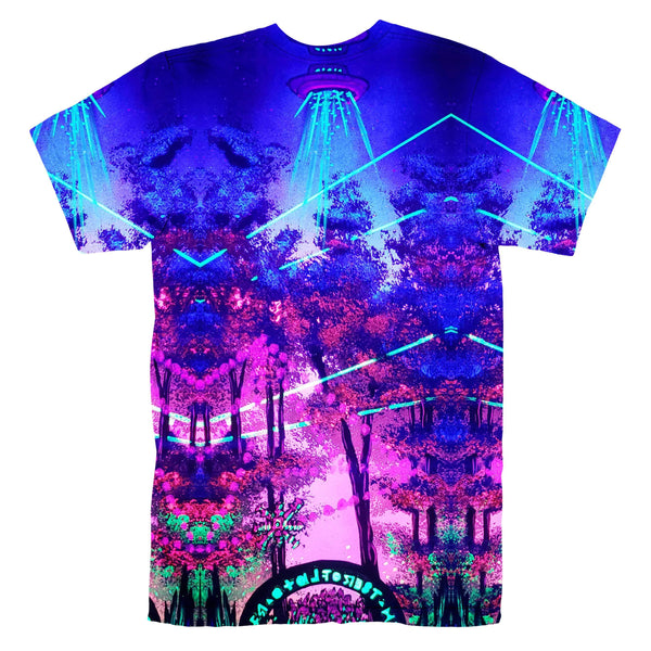FRACTAL ABDUCTION T