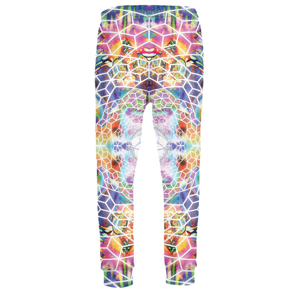 VISIONARY JOGGERS