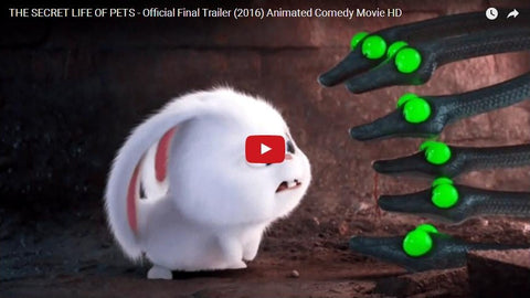 The Secret Life Of Pets- Official Final Trailer (VIDEO 2016)