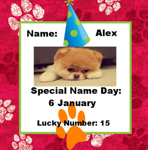 Find your Pet's Special Name Day and His/Her Lucky Number!