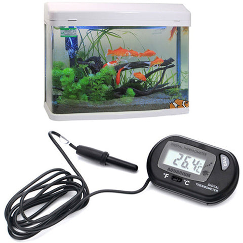 Digital LCD Terrarium Thermometer - ForHappyPets.com