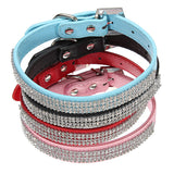 Dog PU Leather Buckle Neck Strap - ForHappyPets.com