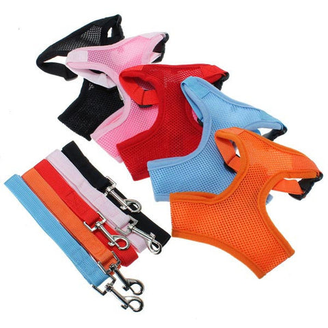 Dog Harness Walk Vest And Pulling Lead - ForHappyPets.com