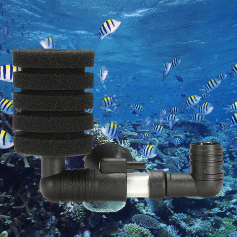 Sponge Breeding Fry Shrimp Aquarium Filter - ForHappyPets.com