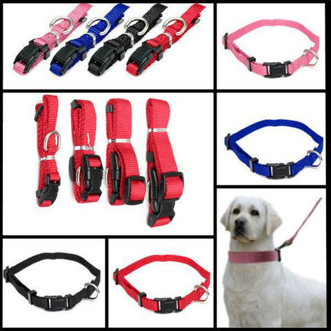 Adjustable Solid Nylon Collar For Dog - ForHappyPets.com
