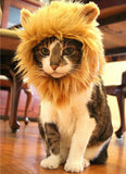 Small Lion Halloween Costume For Dog Cat