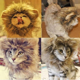 Small Lion Halloween Costume For Dog Cat - ForHappyPets.com