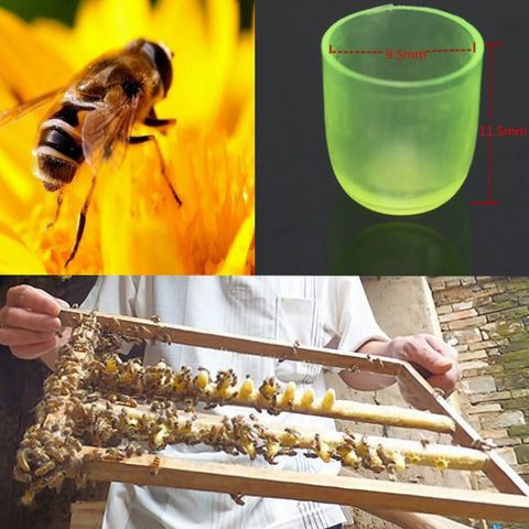 Pcs 200 Queen Beekeeping Cell Cups - ForHappyPets.com