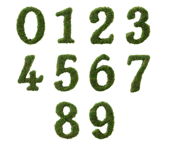 Moss Wedding Decor Table Numbers