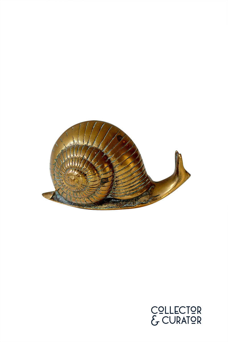 Brass Snail Decorative Object - Collector & Curator